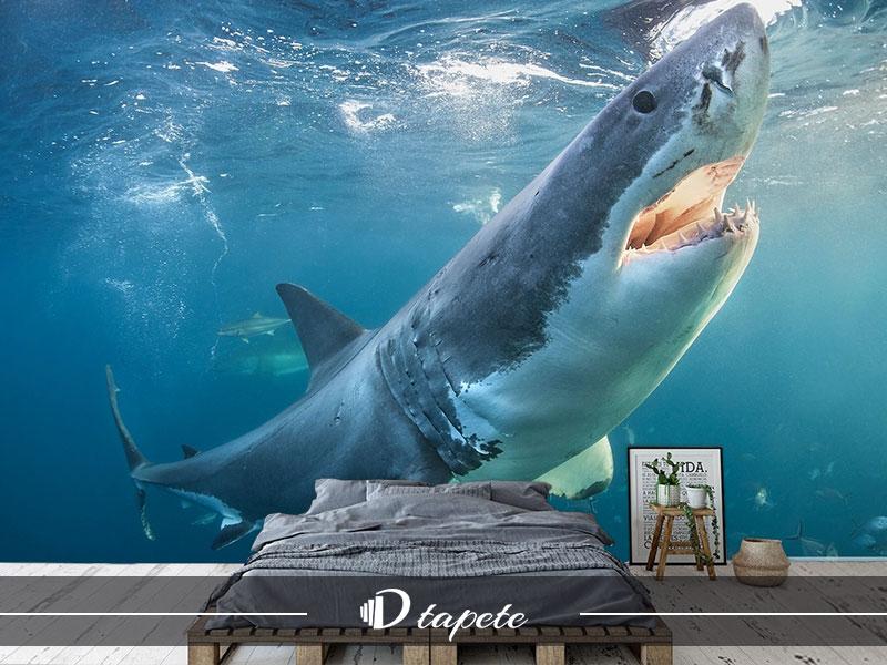 tapet vodeni svet, izrada tapete vodeni svet, štampa foto tapete vodeni svet za zid